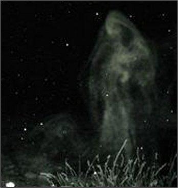 ghost_bayz0066