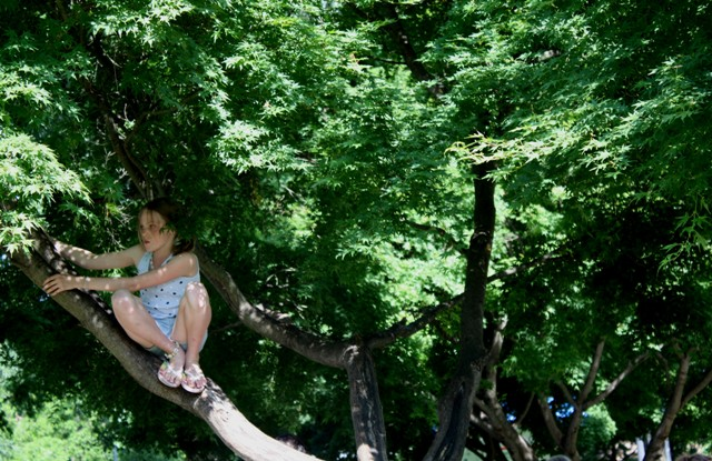 Girl in a Tree
